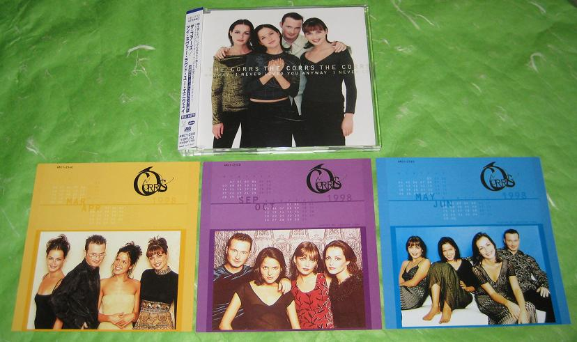 Corrs - I Never Loved You Anyway Record