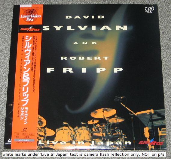 david sylvian damage
