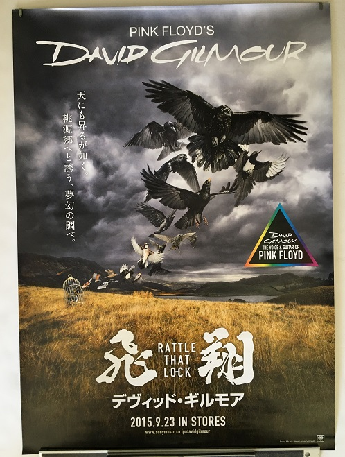 PINK FLOYD (D.GILMOUR) - Rattle That Lock promo poster - Poster / Affiche