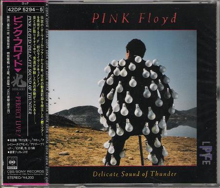 Pink Floyd - Delicate Sound Of Thunder EP